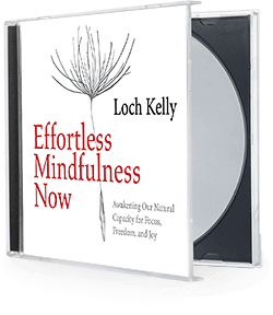 Effortless Mindfulness Now, by Loch Kelly