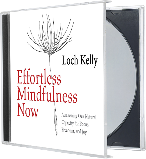 Effortless Mindfulness Now, a book by Loch Kelly