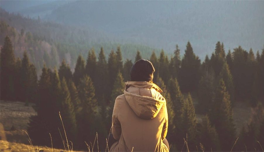 Woman looking at landscape of forest